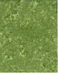 Mini Leaves - Wilmington Batiks 22046-777 - Green