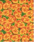 Primrose Path - Wilmington 99114-785 - Orange